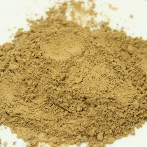 red reishi powder